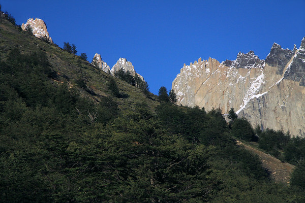 Beyond the Southern Beech trees, along  the lower slope of Mt. Almirante Nieto - to the peak of Torres Central (l), twin peaks of Cerro Norte (c), and Cerro Nido Condor (r).