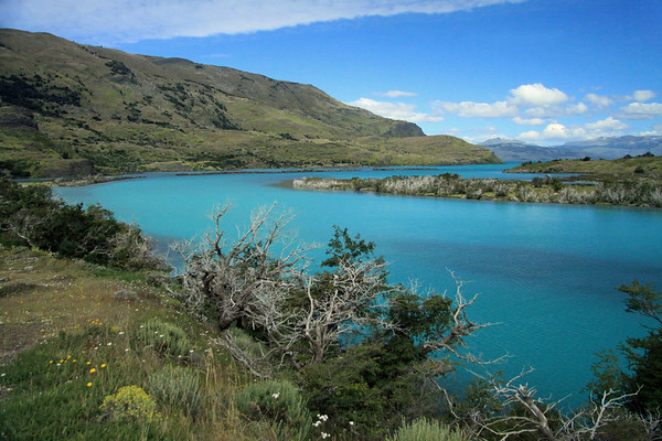 Along the southern end of Rio Paine, displaying its glacial water - at its confluence with the northwestern end of Lago Toro, and southern slope of Sierra Toro -  across the distal La Peninsula - to the distal Cerro Castillo (l) and Cerro Campanilla (r).