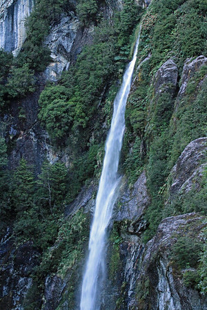 Ribbon falls, sourced from the early summer season's snow and glacial ice - along the steep vegetated slope of the Queulat National Park.
