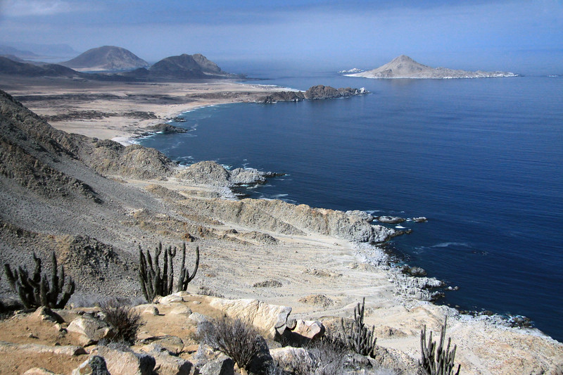 From the Matorral ecoregion scrub vegetation, along the steep cliff of the Coastal Range - viewing >1000 ft. (> 300 m) down to the Atacama Desert coastline - to Punta Rodriguez, and beyond to Isla Pan Azucar - with Cerros Soldado (partially shadowed) and Castillos (totally sunlit), further down the coastline.