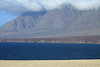 Coastal Atacama Desert - Antofagasta region - northern Chile - here viewing across Bahia Moreno, up the eastern slope of Morro Moreno, the southern end of the Mejillones Peninsula - Morro Moreno National Park.