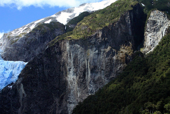Edge of the Ventisquero Colgante - forested slope of southern beech trees - and glacial sculpted rock of the Patagonia Andes - Queulat National Park.