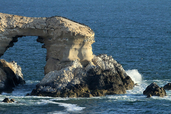 Bahia Moreno wave crashing onto the western end of La Portada sea arch - with the marine birds upon (booby and cormorants).