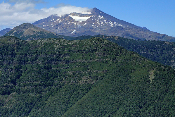 Beyond the rocky and forested slope and ridge of the Cordillera Thermas - to Cerro Mora - and the distal fumarole (geothermal vent), then above to the glacier in the northwestern crater of Volcan Tolguaca.