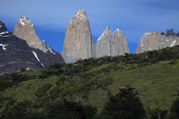 Beyond  the Southern Beech trees, cushion plants, and shrubs along the lower slope of Cerro Paine - to the northern slope of Mt. Almirante Nieto (l), beyond to Torre Sur, and the distal summit of Cerro Fortaleza - back to Torre Central, and adjacent twin peaks of Torre Norte - with the jagged granite peak, and lower metamorphic hornfels rock ridge, of Cerro Nido Condor (r).
