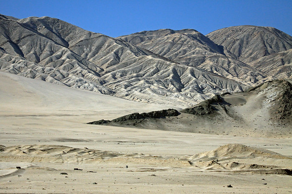 Pan de Acucar National Park (1985) - protects the coastal desert, the Matorral ecoregion, situated at the borders of northwestern Atacama region and southwestern Antofagasta region  - part of the Atacama Desert, that stretches southward for about 600 mi. (1,000 km), from the northern Chile border, and is only around 110 mi. (180 km) at its widest, and extends from the Pacific Coast up to about 4,900 ft. (1500 m), this is the driest (non-polar) desert on Earth - this image along the Quebrada Castillo.