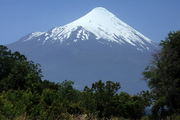 Beyond the early summer season vegetation of the Valdivian Temperate Rainforest ecoregion - to the southwestern face of Volcan Osorno - this conical and glacier capped active volcano, last emitted basalt and andesite during its last eruptions.