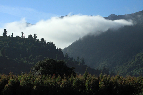 Morning clouds along the vegetated slopes of Valdavian Temperate Forest ecoregion - the Cerros Rollizos - Llanquihue National Reserve - Los Lagos region.