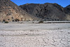 From the dehydrated soil of the Atacama Desert - beyond a few xeric shrubs - to the rocky slopes of the Cordillera Costa - Pan Azucar National Park.