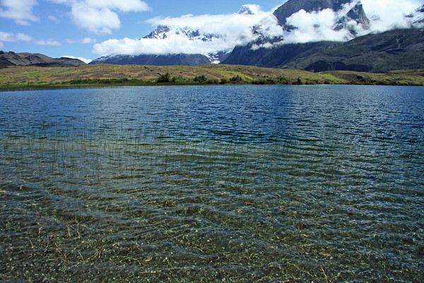 Spike sedge growing from the clear water of an endorheic lagoon - to the lower slopes of Mt. Almirante Nieto (r) - slopes of Cuernos Este and Principal (c) - and beyond the mouth of the Valle Frances, to Cumbre Principal, the peak of Cerro Paine Grande.