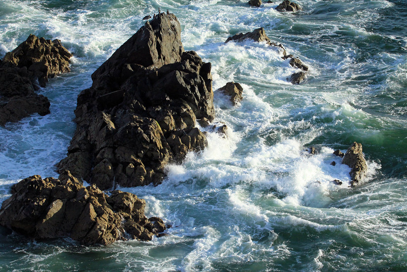 Waves breaking among the the volcanic rock, with 6 Red-legged Cormorants and a Peruvian Pelican perched atop - shoreline along Bahia Moreno.