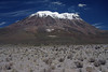 Beyond the arid vegetation of the Andean Plateau - up the northeastern slope of Volcan Ollagüe.