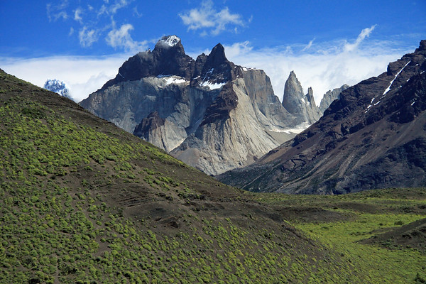 Beyond the cushion plants in bloom, during the early summer season, and slope of Mt. Almirante Nieto - to Cuernos del Paine (c) - with  La Mascara (twin peaks) and La Hoja (r) - and Cumbre Principal, Cerro Paine Grande (l).