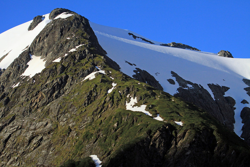 Sunlight and shadows along the upper tree-line and snow-coated glacial ice - Portezuelo section, Queulat National Park.