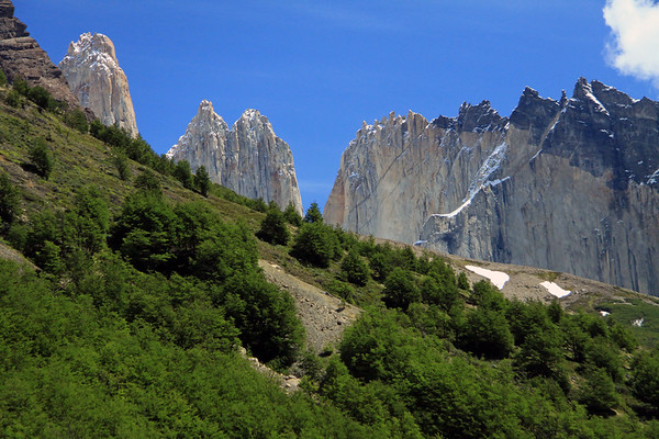 Across the southern beech trees and snow patches, during early summer season, along the lower slope of Mt. Almirante Nieto - to the metamorphic rock cap of Cerro Nido Condor (r) - Torre Norte (c), and the granite spire peak of Torre Central (l).
