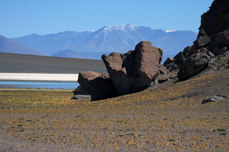 Beyond the tussock grass and scree boulders - viewing northeastward across the Laguna Santa Rosa and Salar Maricunga - to the lower slopes of Cerro la Sal (l), and the distal slopes and ridges of the Cordillera Claudio Gay, along the horizon.