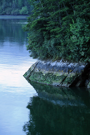 Along the forested and rocky shoreline, during the early morning light upon the fjord Seno Ventisquero, the Pacific Ocean - Queulat National Park.