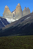 Beyond the cushion plants to the partially sunlit Lenga Beech forest, along the lower slope of Cerro Paine - across the Asencio Valley, to the glacial ice streams along the slope, of Mt. Almirante Nieto - to the the sunlit iconic intrusive igneous granite spires of the Torres del Paine - Torre Sur, with the glacier below, and beyond its northern shadowed buttress, to Cerro Fortaleza, revealing its metamorphic caprock peak - Torre Central, attached by the col Bich (gap or saddle), to Torre Norte (revealing its twin peaks).
