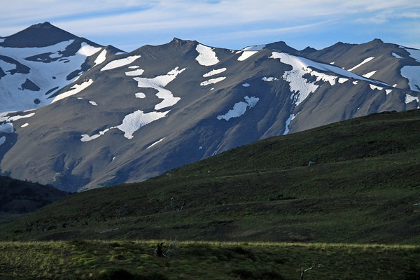 Snow-coated glacial ice, upon the slopes of Cerro Diente - beyond the Patagonia Steep ecoregion vegetation.