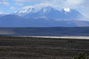 Across the high altitude scrub vegetation of the Central Andean Dry Puna ecoregion - across the Salar Ascotan - over Cerro Pabellon - to the distal sunlit and cloud-shadowed, Volcan Aucanquilcha, consisting of 4 peaks greater than 19,685 ft. (6,000 m) and several fumaroles.