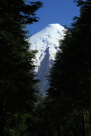 Beyond the forested vegetation of the Valdivian Temperate Forest ecoregion - to the southern glacial-capped peak, of Volcan Osorno.
