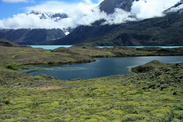 Early summer season at Torres del Paine National Park - displaying the blooming cushion plants - and endorheic lagoon - glacial water of Lago Nordenskjold - the dikes and waterfall along the slope of Mt. Almirante Nieto (r) - beyond the stratus cloud to a lower horn of Cuerno Este (c), and lower slope of Cuerno Principal beyond - with Cerro Paine Grande (l).
