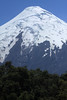 Beyond the tree tops - to the southern face and glacial ice cap, atop the conical Volcan Osorno.