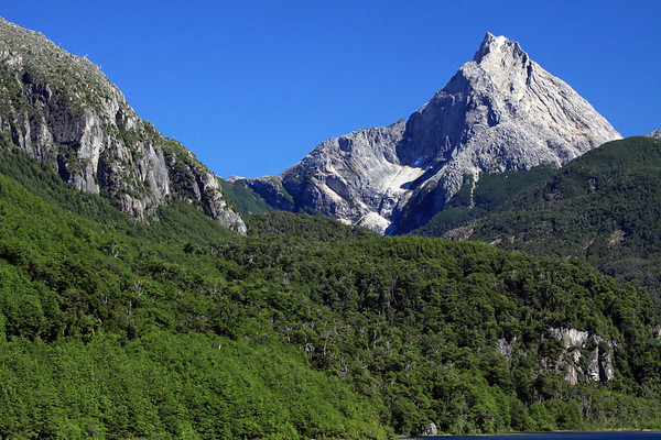 Lago las Torres (Towers Lake) National Reserve - southern beech trees, igneous rock, and glacial lake.