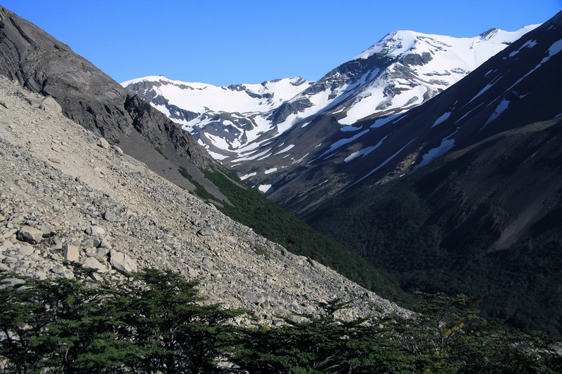 Over the upper branches of the southern beech trees, with the epiphytic (Misodendrum punctulatum) there upon - across the glacial moraine, with its till flowing into the Valle Ascencio - with the lower slopes of Cerro Nido Condor (l) and Cerro Paine (r) - to the distal Cerro Koch, above the northeastern end of the Silence Valley.