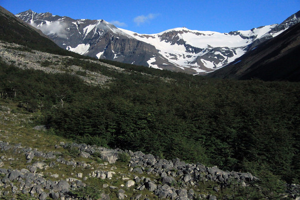 Southern Beech trees growing among the morraine (glacially formed accumulation of unconsolidated glacial rock debris) - between the lower slopes of Cerro Nido Condor (l) and Cerro Paine (r) - to the distal Cerro Oggioni, above the clouds.