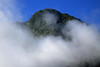 Beyond the cumulus clouds - to the southern beech trees, of the Valdivian Temperate Forest ecoregion - along the Cerros Rollizos - Llanquihue National Reserve - Patagonia Andes.
