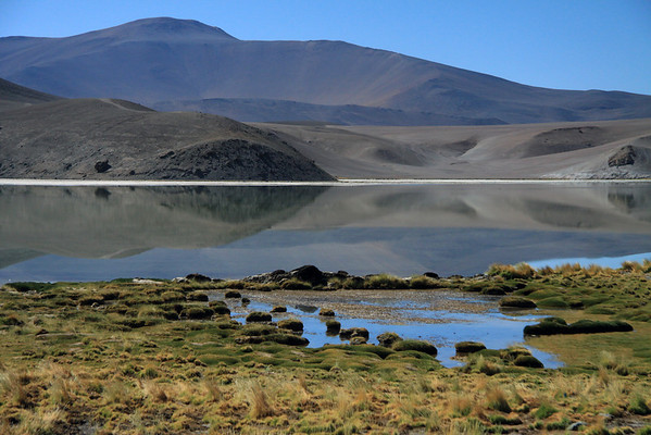 From the tussock grass and cushion plants - across Laguna Santa Rosa - to Cerro Pastillos, peaking at about 14,578 ft. (4,443 m).