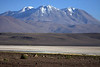 Across the northern Salar Ascotan - beyond the slopes of Cerro Pabellon - up to Volcan Aucanquilcha.