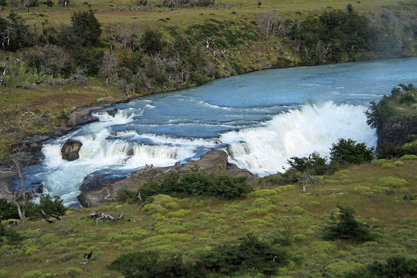 Beyond the southern beech tres, cushion plants, shrubs, and tussock grass - to the Paine Waterfalls - displaying its glacial milk or rock flour water, from the Southern Ice Field, the Patagonia Andes - Magellanes region - southern Chile.