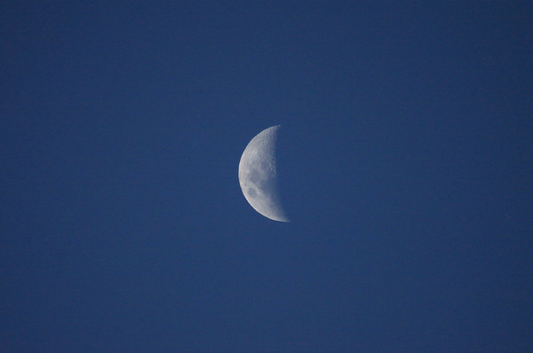 First Quarter Moon - it rises at noon and is high overhead at sunset - here displaying is mares - Mare Crisium (lower, l), the Sea of Crisis - Mare Funcuditatis (c), the Sea of Fertility - Mare Nectaris (upper, r), Sea of Nectar - and Mare Tranquillitatis (lower, c), the Sea of Tranquility.