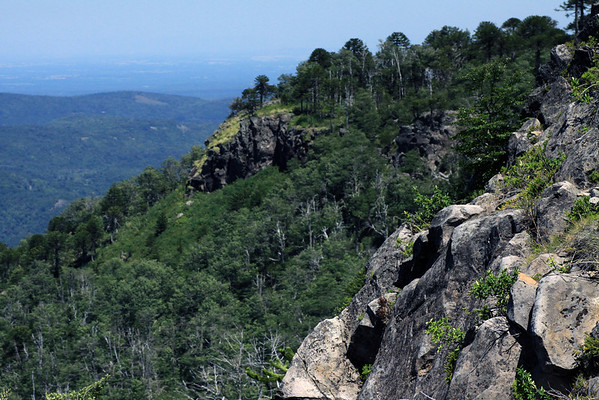 Along the rocky and forested ridge of the Cordillera Malleco - viewing westward beyond the foothills of the Andes.
