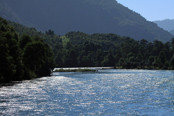 Sunlight reflection upon the Rio Palena - and its Valdivian Temperate Rainforest vegetation, along the shore.