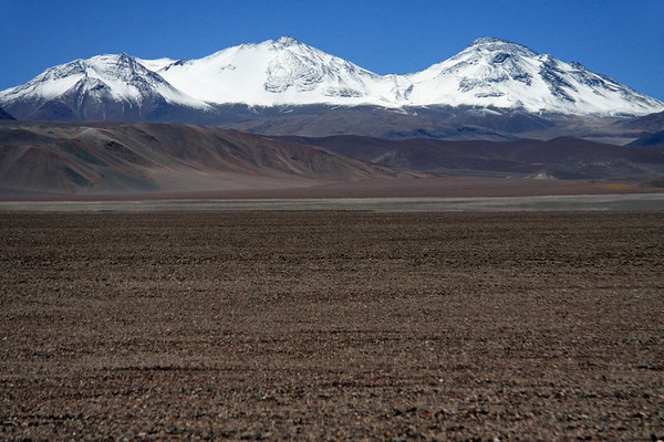 Across the Salar de Maricunga - to Nevado Tres Cruces (three snowy crosses) - and the naked Puna sky above.