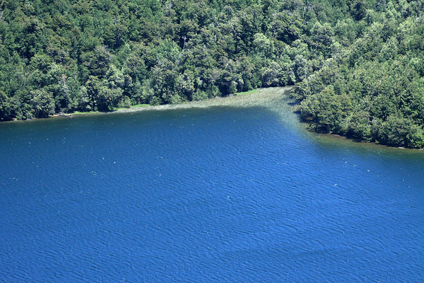 White-caps upon the water of Laguna Malleco - with the spike sedges and forested slopes, along the southern shoreline.