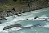 Glacial milk rapids, among the sedimentary rocks, of the Rio Paine.