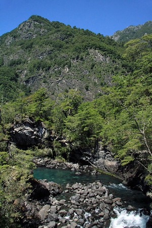 A distributary, distributary channel, or river bifurcation (a stream or river that  branches off and flows away from a main stream/river channel) - this example from the Petrohue River - sourced from the Lago Todos los Santos (All Saints Lake) - with the lower forested slopes of the Sierra Santo Domingo above - Vicente Rosales National Park.