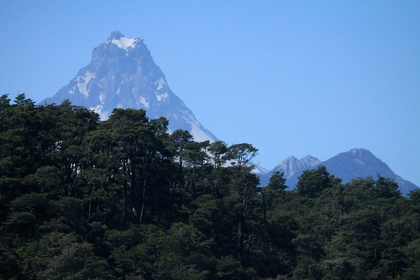 Across the southern beech trees (Nothofagus, genus) - to the glacial ice and igneous rock conical peak, of Volcan Puntiagudo - an andesitic (extrusive igneous rock) stratovolcano - with adjacent scoria cones (also called cinder cones).