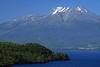Across the forested peninsula, at Punta Lavas - the eastern end of Lago Llanquihue - to the Volcan Calbuco.