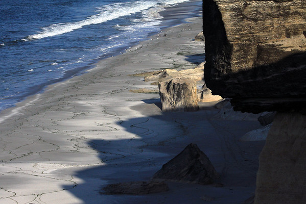 From the sea cliff ledge - down to the jagged rock ledge shadows, cast upon  the sandy shoreline of Bahia Moreno - among the sandstone outcrops and kelp lines, to the kelp gulls, oyster catchers, Peruvian pelicans, and breaking waves.