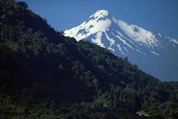 Beyond the forested and steep slope along the Reloncavi Fjord - to the glaciated Volcan Yate.