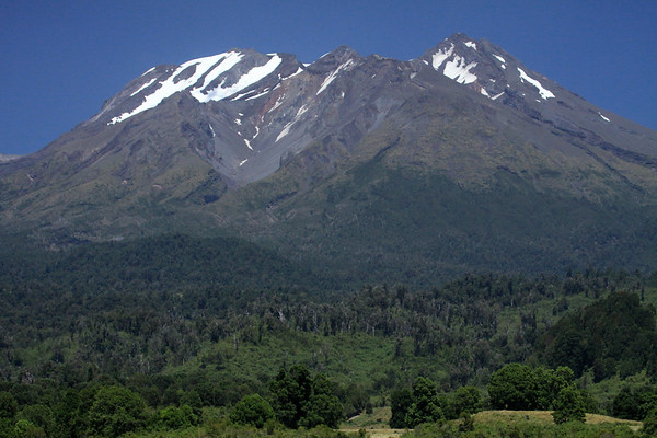 Beyond the forested lower slope, to the northern face of Volcan Calbuco - an andesite volcano (extrusive igneous rock of intermediate composition) - with glacial ice atop - Llanquihui National Reserve.