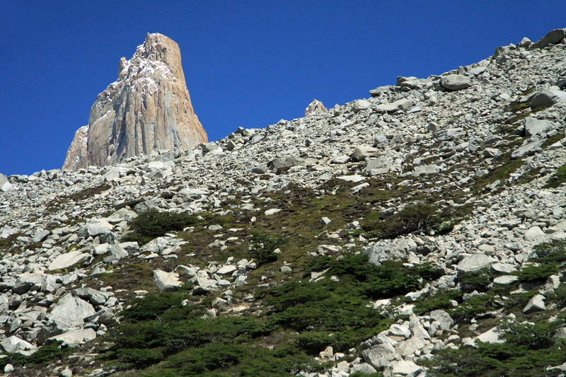Across the vegetated lateral moraine and till - to the summit of Torre Central (l), and the southern peak of Cerro Norte (r).