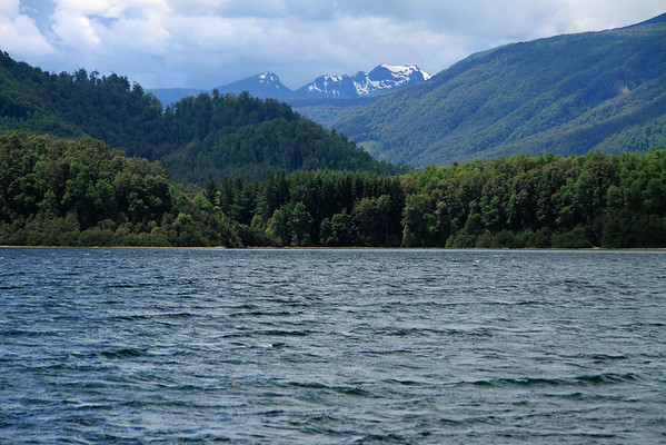 From the southern end of Lago Pirehueico, Chile - Valdavian Temperate Forest ecoregion, and the predominate southern beech trees - to Cerro Acol.