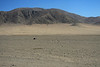Across the Quebrada Grande - to the slopes along the Cordillera Costa (range) - Atacama Desert - western Antofagasta region - northern Chile.