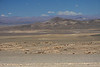Desierto de Atacama (Atacama Desert) - here amongst the  slopes of the Cordillera Costa - southwestern Antofagasta region - northern Chile.